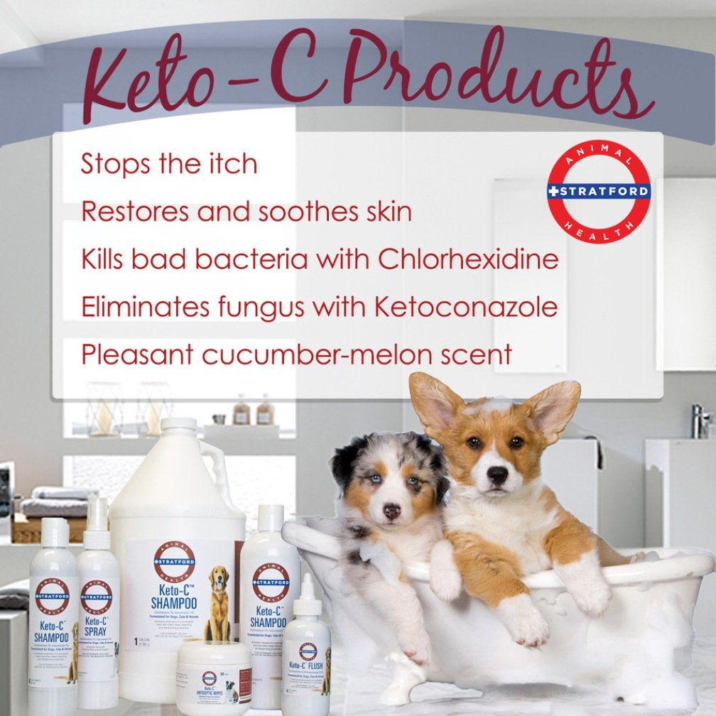 Stratford Pharmaceuticals KETO-C Medicated Shampoo - Chlorhexidine w/Ketoconazole and Aloe (Antibacterial & Anti-fungal) for Dogs, Cats, and Horses - A Pleasant Cumber Melon Scent! (1 Gallon) by Stratford Pharmaceuticals (Image #3)