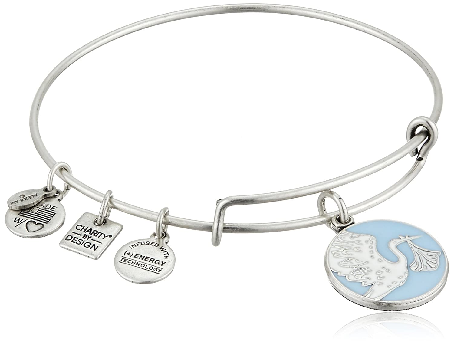 Alex Ani Charity Design Delivery Image 1