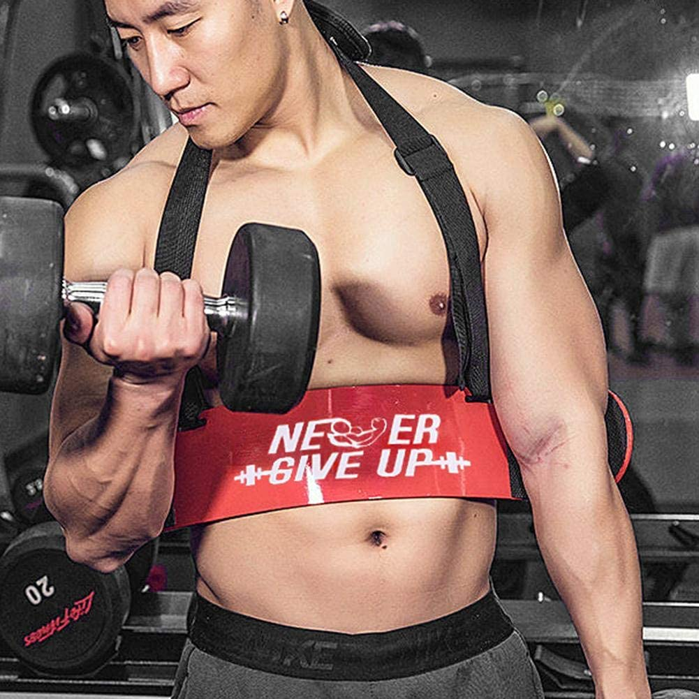 Premium Arm Curl Blaster Arm Bicep Support Adjustable Bodybuilding Biceps Bomber Curl Support Straps Training Accessory Isolate Muscles for Maximum Strength