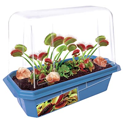 Grow Your Own Frightening Venus Flytraps - Kids Terrarium Kit to Grow Vicious Bug Eating Monsters - Includes Everything Needed for These Fascinating Plants to Flourish: Toys & Games
