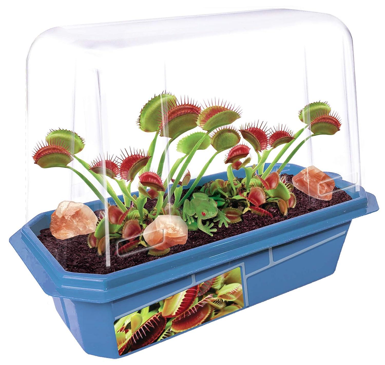 Amazon.com: Crece tus propias flytraps de venus, kit de ...