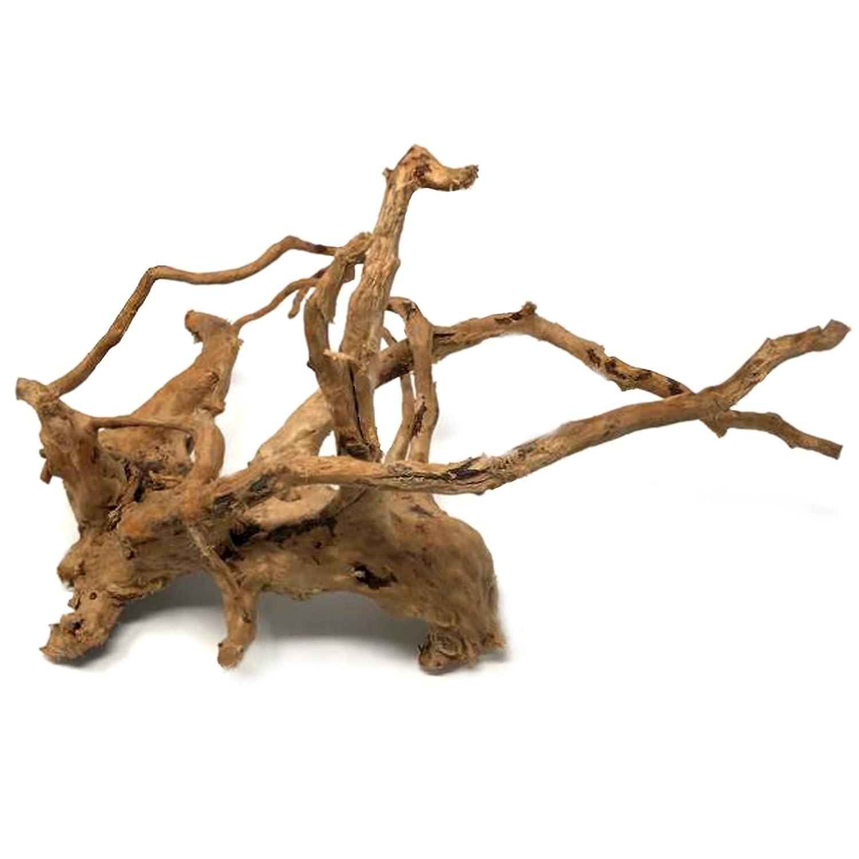 225 & Dendrophile Driftwood - Natural Branch Wood Ornament for Medium to Large Aquariums Terrarium \u0026 Habitat Decor and Artistic Home Decorating Needs