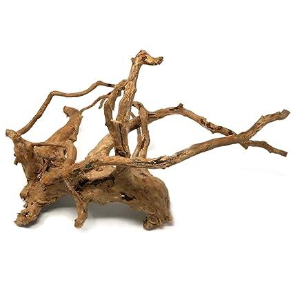 Image Unavailable  sc 1 st  Amazon.com & Amazon.com : Dendrophile Driftwood - Natural Branch Wood Ornament ...