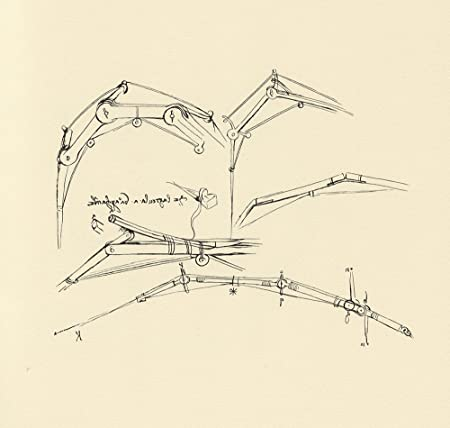 Leonardo Da Vinci - Diagram of a proposed flying machine ... on