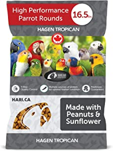 Hari Tropican Bird Food