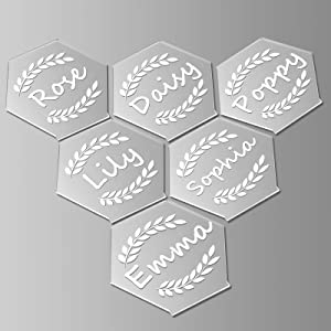 12PCS Clear Place Card Hexagon Acrylic Name Card Custom Name Settings Card Guest Names Card Escort Cards for Table Perfect for Dinner Parties Food Signs Wedding Party Banquet Events