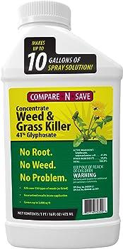 RAGAN AND MASSEY 1 Gallon Post-Emergent Weed And Brush Killer