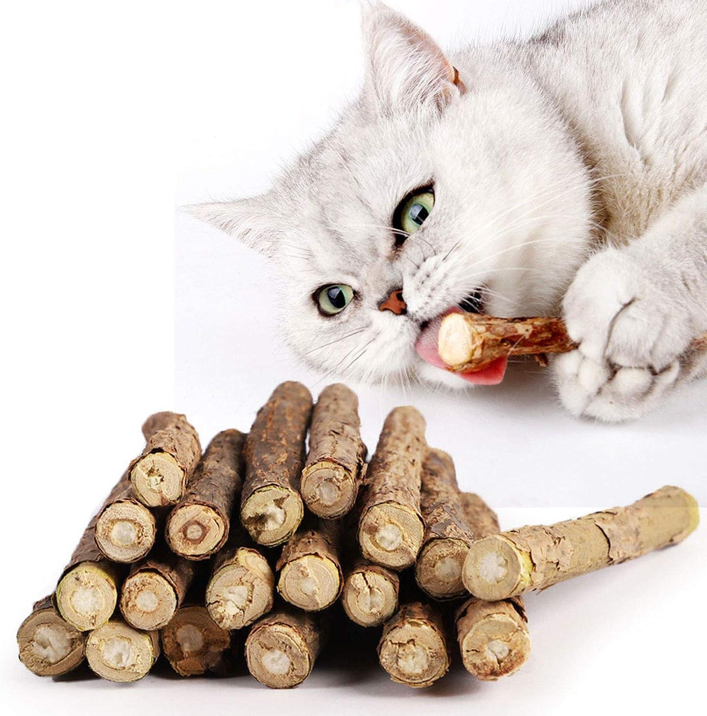 Onebarleycorn Cat Catnip Sticks Teeth Grinding Chew Toy For Cat Kitten 100 Organic Natural Matatabi Dental Treats Pack Of 20 Pcs Amazon Co Uk Pet Supplies