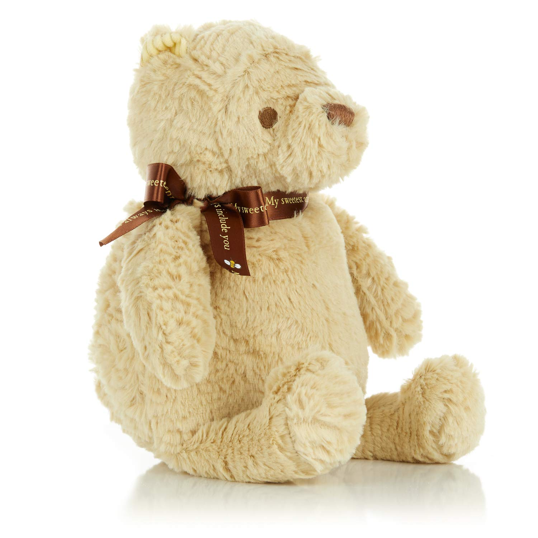 Disney Baby Classic Winnie the Pooh Stuffed Animal Plush Toy, 9 inches