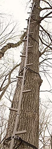 5 Best Climbing Sticks For Hang And Hunt 2019 Updated