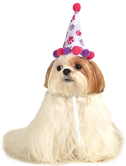 Rubies Pet Birthday Hat Small To Medium Purple And Red Paw Print