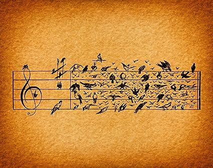 Amazon.com: Music Note Birds Print Rustic Home Decoration Wall Art ...