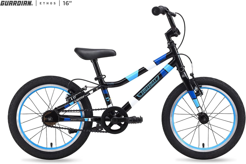 Guardian ethos bike
