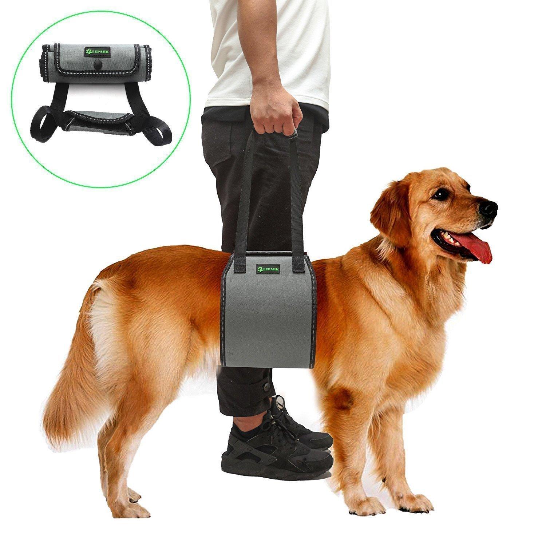 RockPet Soporte para Perros con Manija para la Ayuda Canina, Aprobado por los Veterinarios. Arnés para Levantar Perros Durante la Rehabilitación (M,Gris): ...