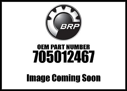 Can-Am 2018 Maverick X3 Max Turbo Silver Rh Door Panel 705012467 New Oem