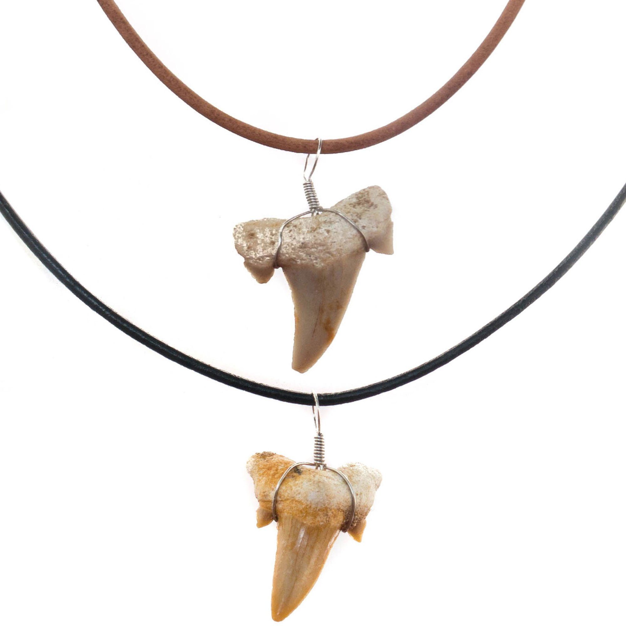 FROG SAC Real Shark Tooth Necklace for Men Boys Teens Kids (2 Pieces) Genuine Fossil Shark Tooth Pendant on Greek Leather Necklace – Mens Classic Surfer Necklace - Fashion Jewelry by (NATURAL/BROWN)
