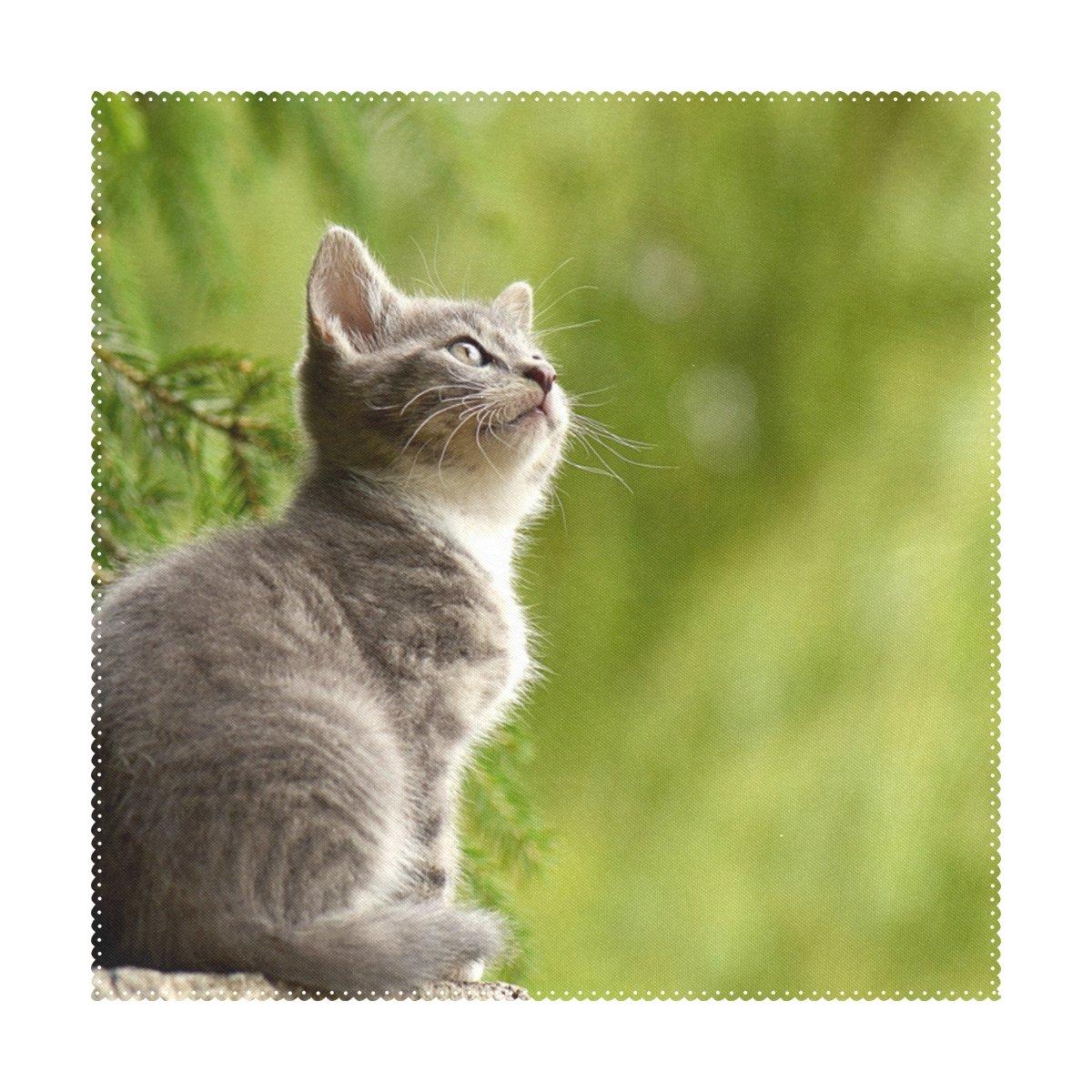 Orezi Cat Sit On stonepolyesterプレースマット、12 x 18インチエレガントなパターンのセット4表プレースマットforホームディナーオフィスアウトドア旅行Decorative Washableテーブルマット   B079WS6Q3K