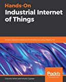 Hands-On Industrial Internet of Things: Create a powerful Industrial IoT infrastructure using Industry 4.0 (English Edition)