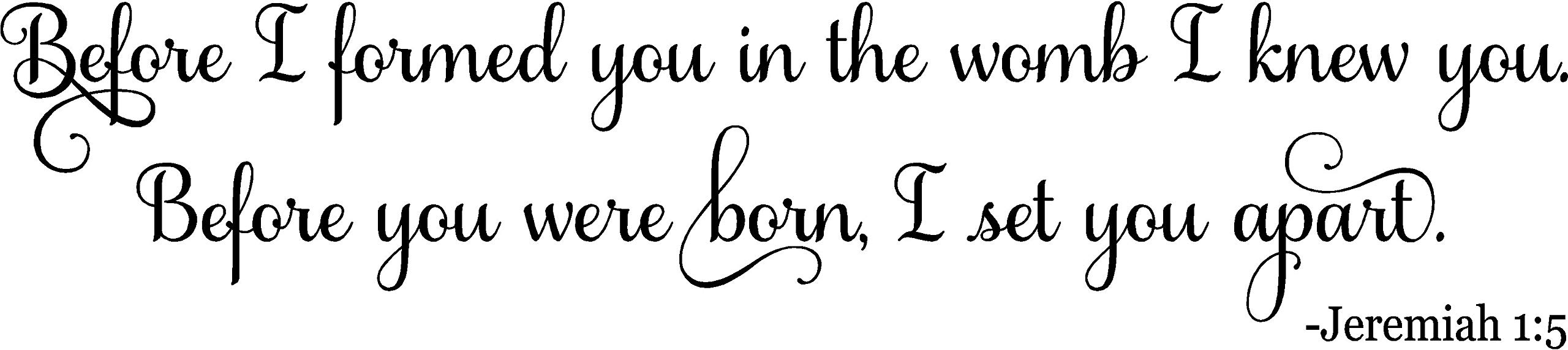 48''x11'' Before I formed you in the womb I knew you. Before you were born, I set you apart. Jeremiah 1:5 Bible Verse Scripture Christian Wall Decal Sticker Art Mural Home Décor Quote Baby Nursery