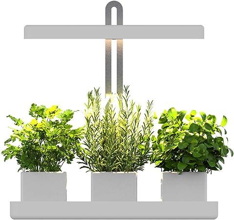 Igrowtek Indoor Herb Garden Smart Garden With Sunlike White Led Grow Light Height Adjustable Safe Low Voltage 24v Dc Adapter Input