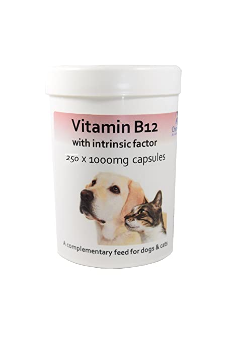 Cápsulas de vitamina B12 con factor intrínseco para perros y gatos x 250