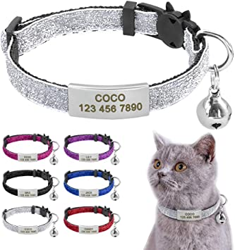 Collier chat medaille gravee