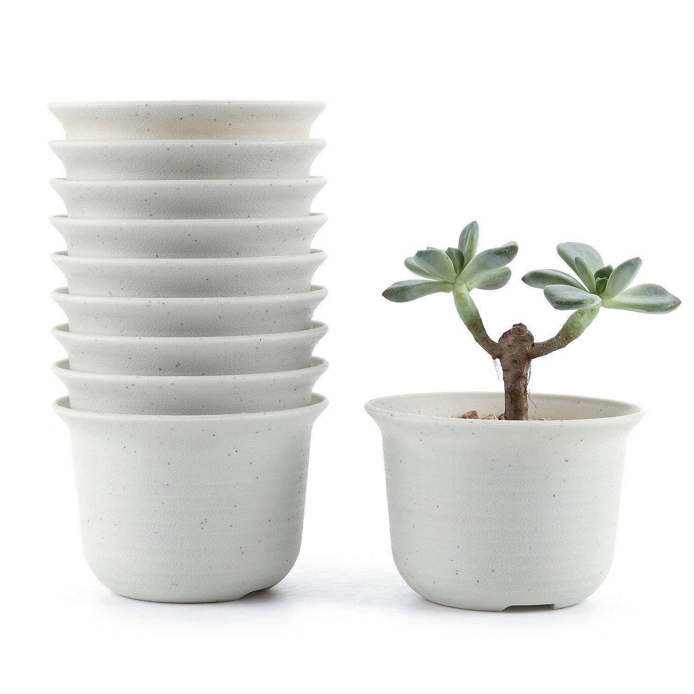 T4U 4.25 Inch Plastic Round succulent Plant Pot/Cactus Plant Pot Flower Pot/Container/Planter Package 1 Pack of 10