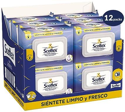 Scottex Spa Sensation Papel Higiénico Húmedo - 12 packs de 70 uds (888 unidades)