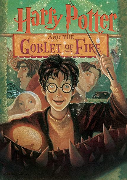 Image result for goblet of fire book cover