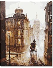 BOSHUN Paint by Numbers Kits with Brushes and Acrylic Pigment- Venice Night 16 x 20 inch