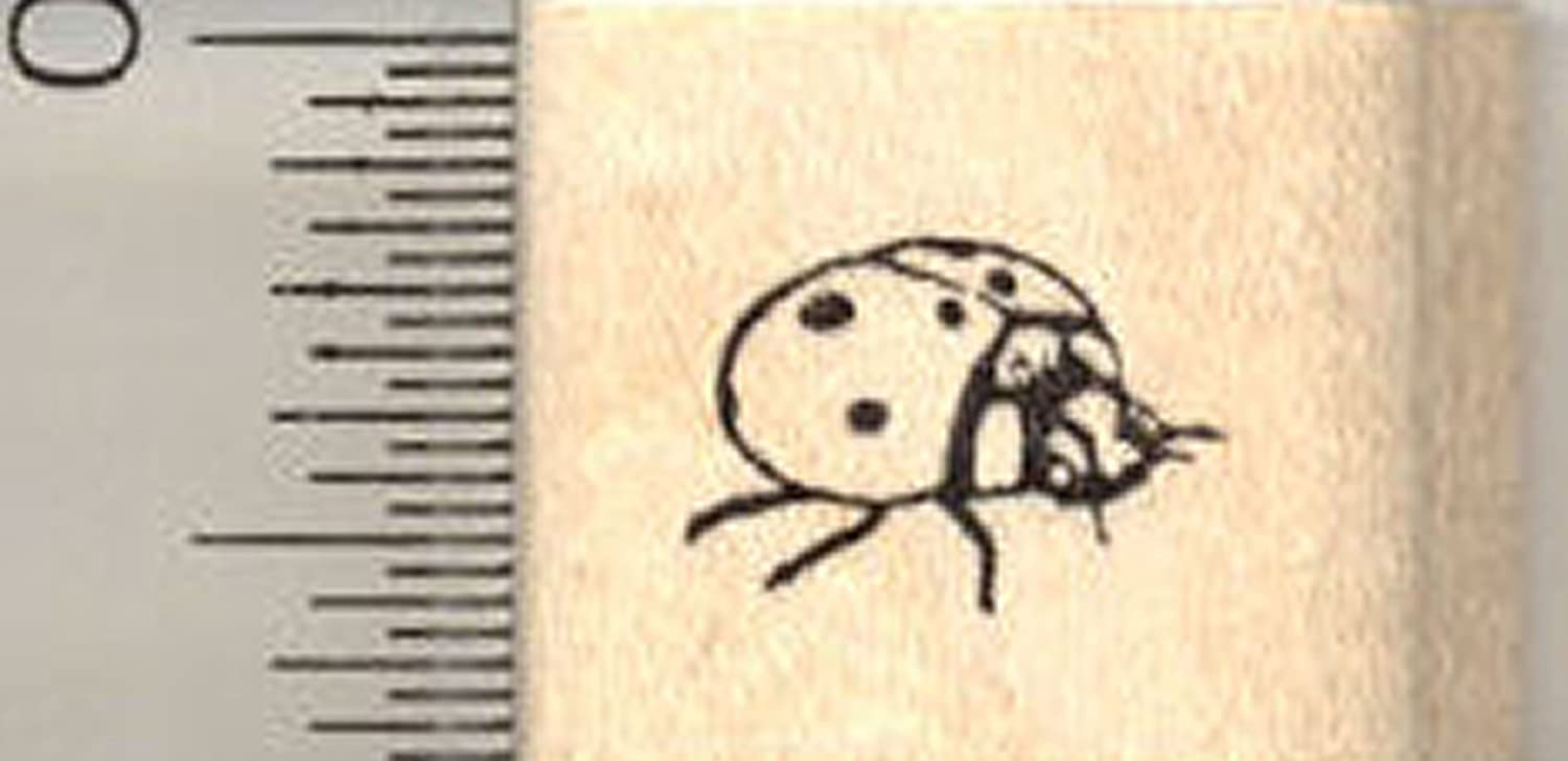 Amazon Ladybug Rubber Stamp Ladybird Beetle Side View Arts Crafts Sewing