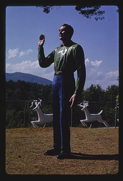 cc480bad8fa Amazon.com  Vintography 8 x 12 Photo Magic Forest Staff Statue ...