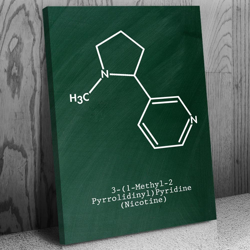 Patent Earth Nicotine Molecule Canvas Print, Tobacco Control, Cigar Lounge, Cigarette Smoking, Vape Shop, Chew Dip Snuff Chalkboard (Green) (16'' x 20'') by Patent Earth