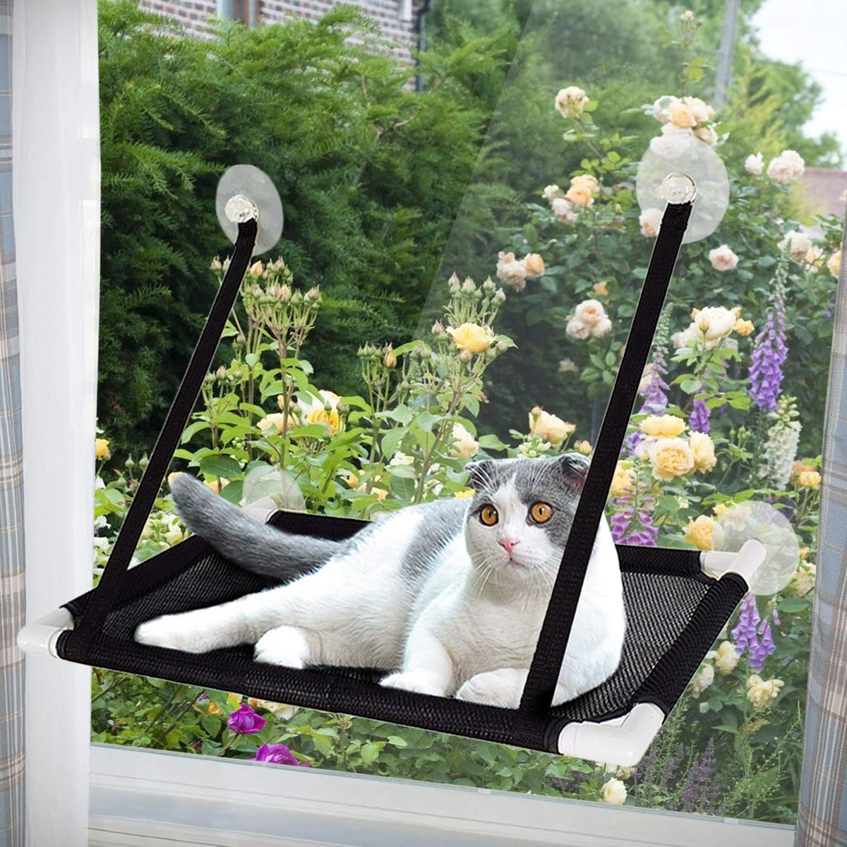 Adorrable Sunny Cat Window Perch Hammock with Stronger Suction Cups, Space Saving Mounted Pet Bed, Hanging Shelf Seat, Holds up to 22 lb,Black by Adorrable