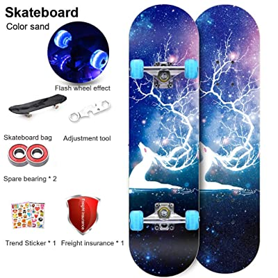 "OFFA Skateboard Cruiser Skateboards Deck, 31"" X 7"" Complete Skate Boards,7 Layer Maple Wood Double Kick Tricks Skate Board Concave Design in Outdoor Recreation for Beginner Kids Boys Girls Youths: Home & Kitchen"