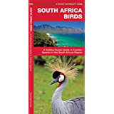South Africa Birds: A Folding Pocket Guide to Familiar Species in the South African Region (Wildlife and Nature Identificatio
