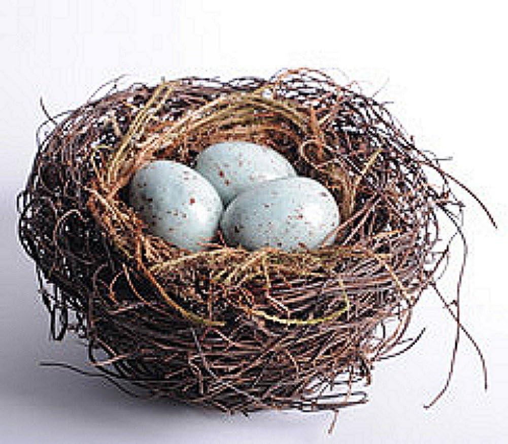 Amazon Com 6 Inch Brown Twig Bird Nest With Blue Eggs Pet Supplies