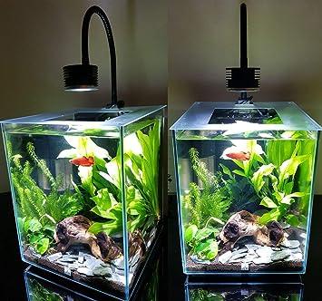 DOLIDO - Luz LED para Acuario, Nano Tanque de Peces, para Agua ...