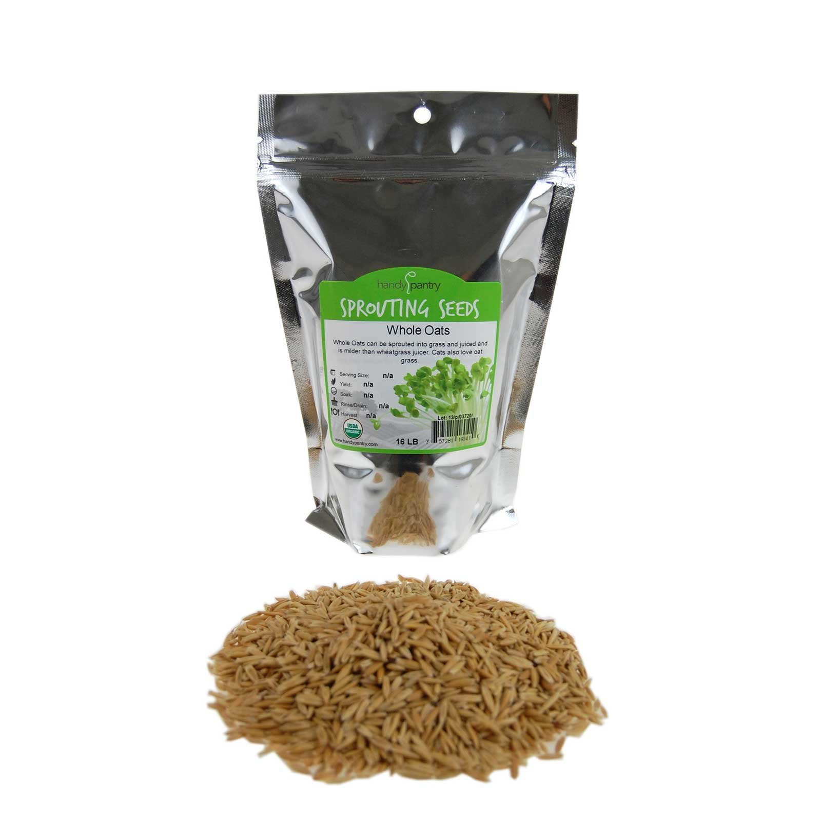 Organic Non-GMO Whole Oat Grain Seeds (With Husk Intact)- 1 Lb Re-Sealable Pouch- Oats Seed Grains, for Sprouting, Oat Grass, Animal Feed, Storage & More