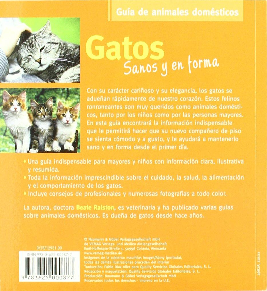 Gatos Sanos y en Forma: NAUMANN & GÖBEL VERLAGSGESELLSCHAFT MBH: 9783625000877: Amazon.com: Books