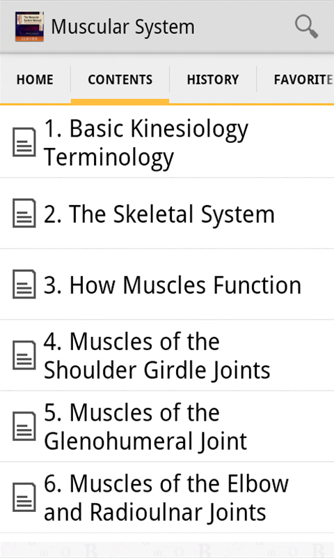 Musculoskeletal Anatomy Coloring Book By Joseph E Muscolino : Amazon.com: the muscular system manual: skeletal muscles of