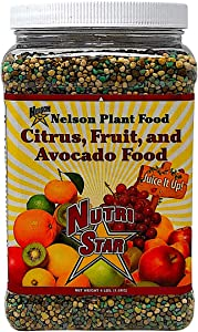 Nelson Citrus Fruit and Avocado Tree Plant Food In Ground Container Patio Grown Granular Fertilizer NutriStar 12-10-10 (4 lb)