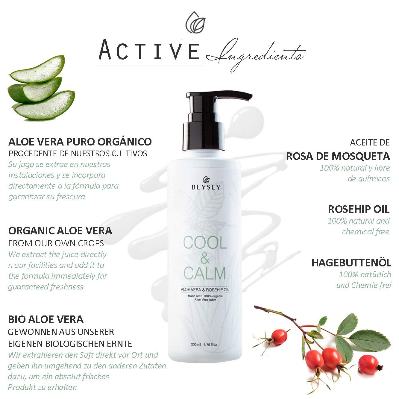 Gel de Aloe Vera Puro 100% ORGÁNICO con Aceite de Rosa de Mosqueta - Crema Corporal Hidratante/Aftersun/Post Depilación - Refrescante, Calmante, ...