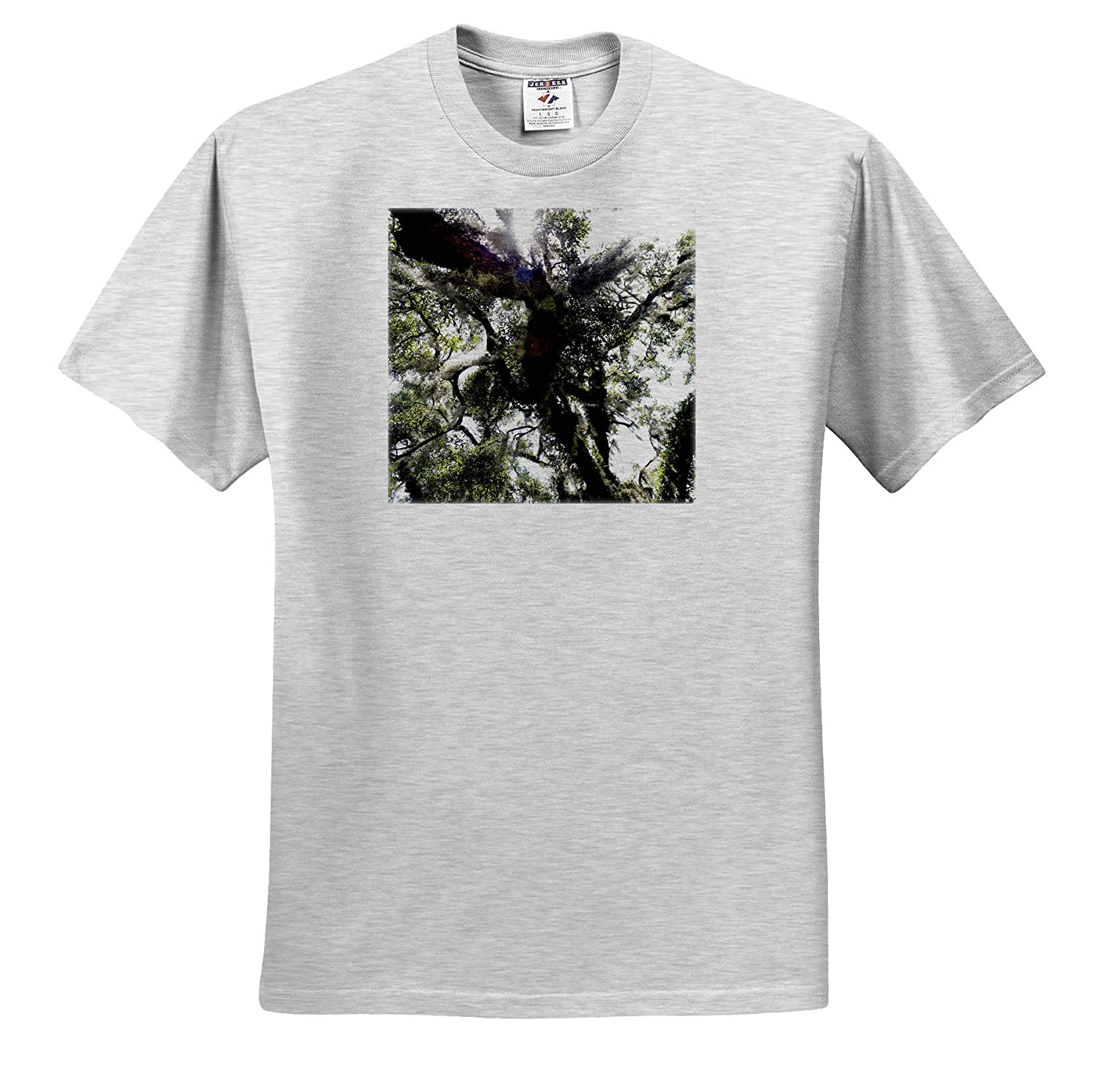 - T-Shirts Nature 3dRose Stamp City Photograph of The Underside of an Old Oak Tree with Spanish Moss