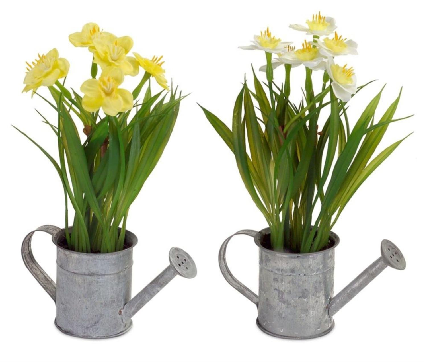 Club Pack of 12 Springtime Daffodil in Weathered Looking Water Can 9""