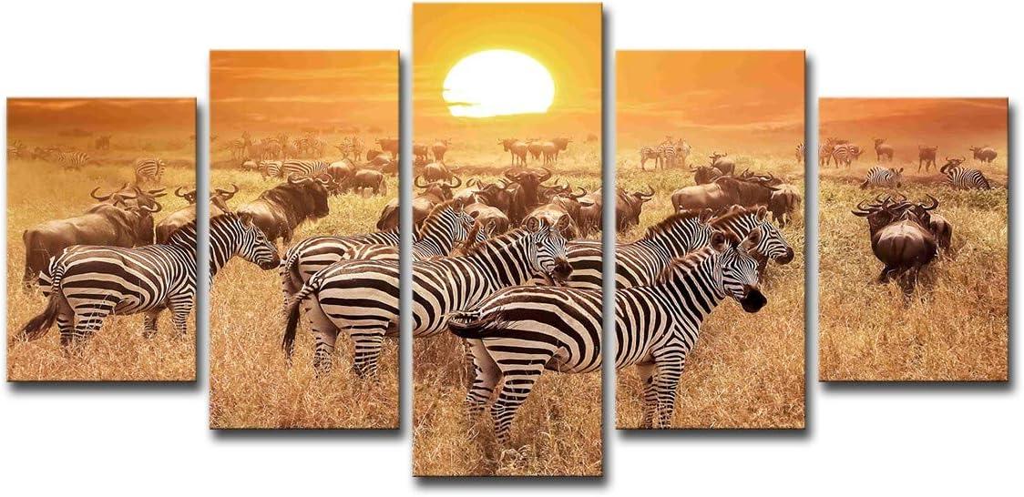 HDWALLART Impresiones De Lienzos Grandes Cuadros Modernos Que Pintan Cuadros Modulares 5 Paneles Cebra Animal Decoración Lienzo Arte Decoración De La Pared Para Sala De Estar Con Enmarcado,XL:63.5x127