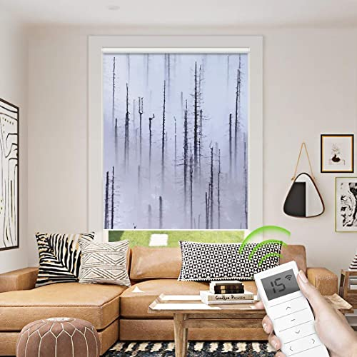 Motorized Roller Shade Painting Print
