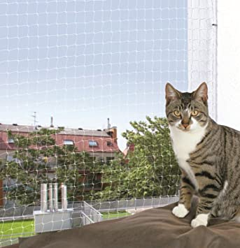 Trixie Filet De Protection Transparent 4 3 M Pour Chat Amazonfr