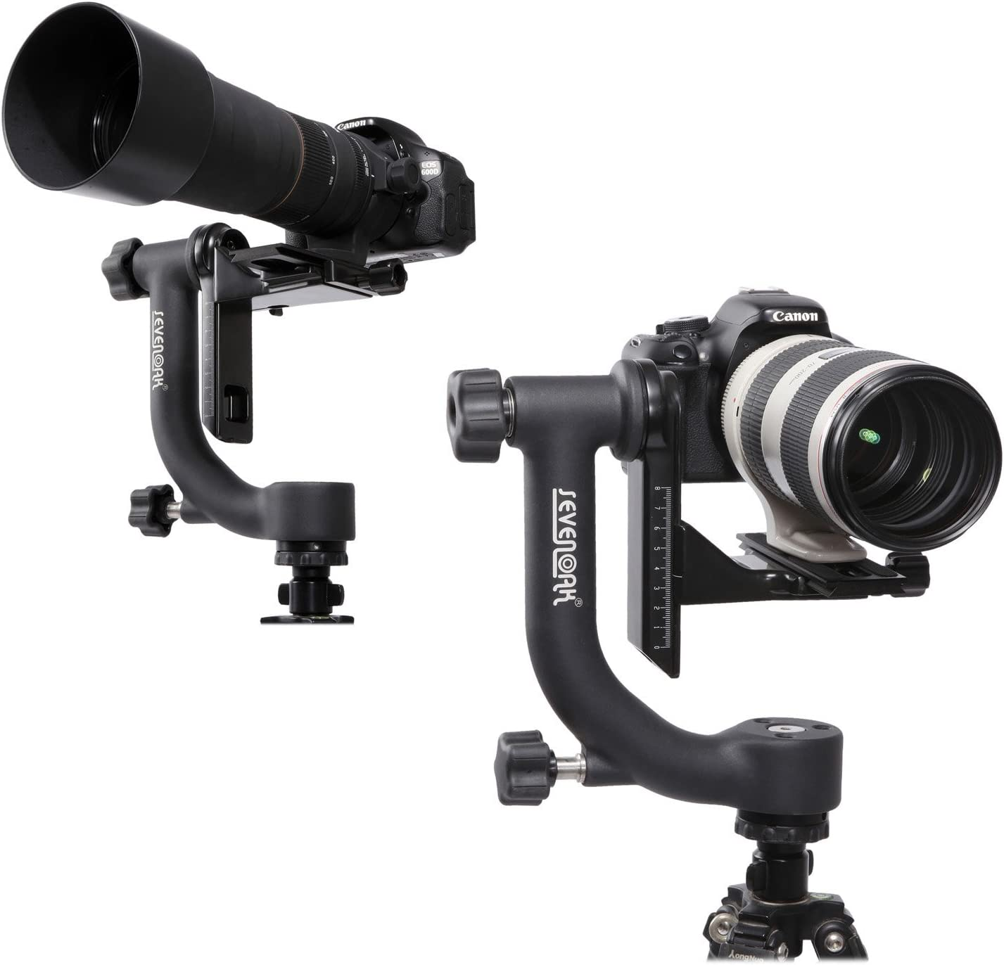 Camera Tripod Time Lapse Gimbal Head Heavy-Duty Panoramic Gimbal Head Arca-Swiss Quick-Release Plate for Canon Nikon Olympus Sony DSLR Cameras Camcorders Bird Wildlife Photography Movie Recorder