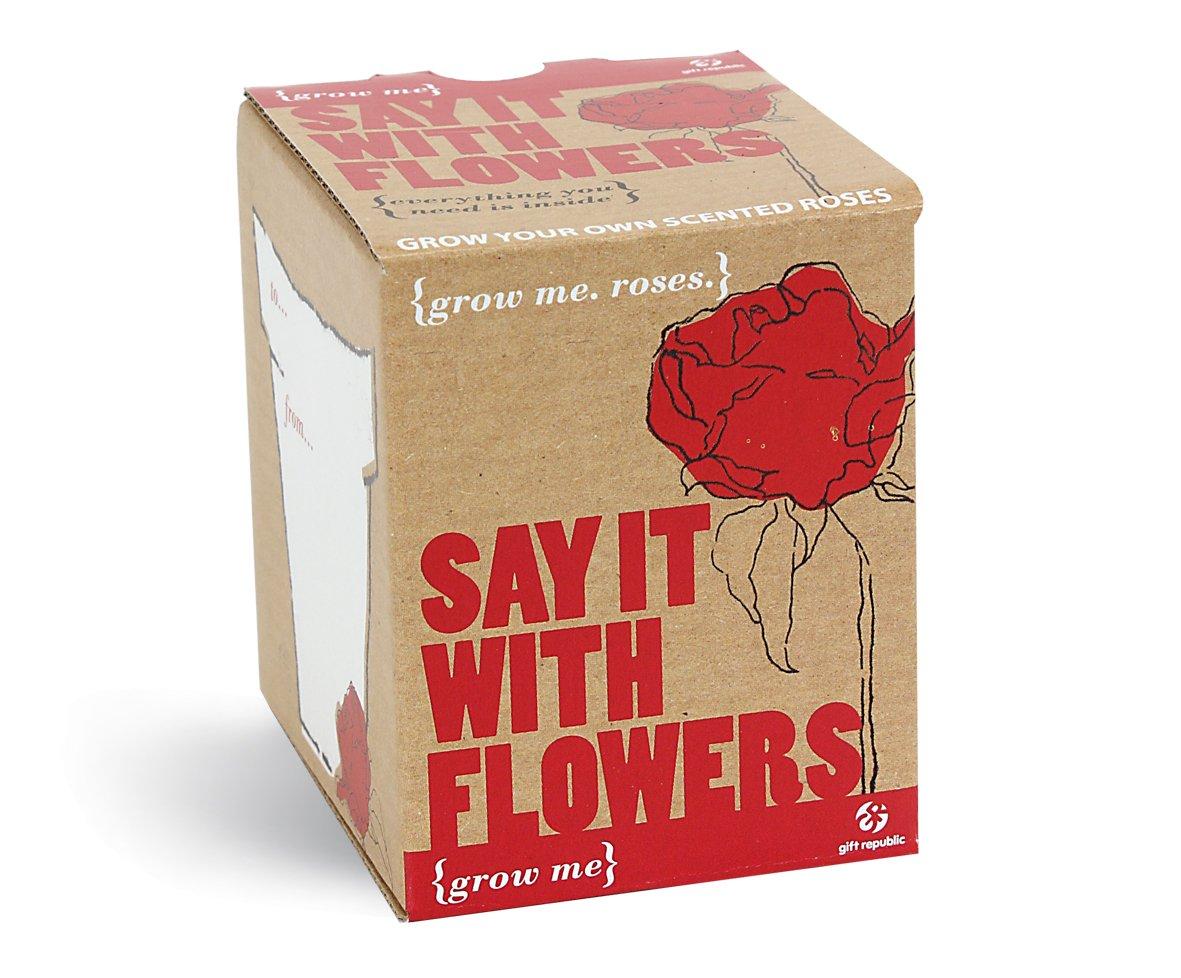MAGS Vertriebs 11726 Grow Me Lass Blumen Sprechen Geschenkbox
